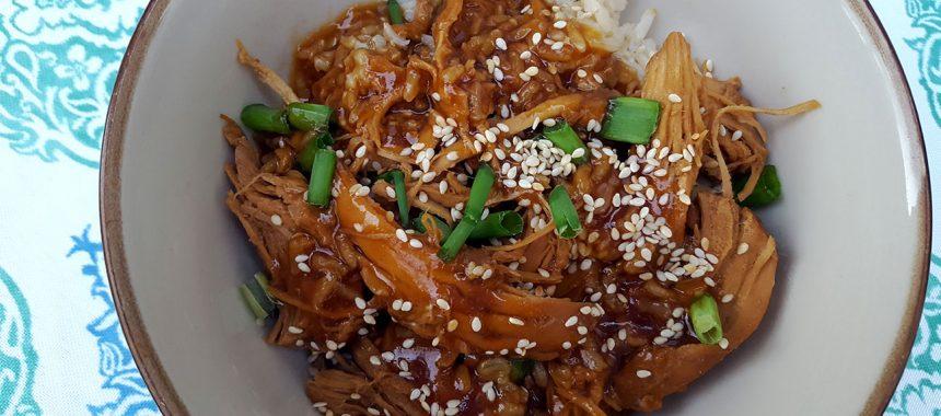 Crock Pot Teriyaki Chicken with Fennel Rice